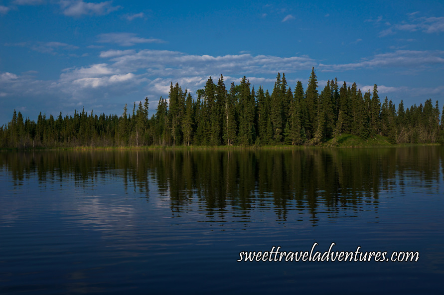 The grassy shore lined with trees and blue sky with large fluffy white clouds all reflected on the rippled water