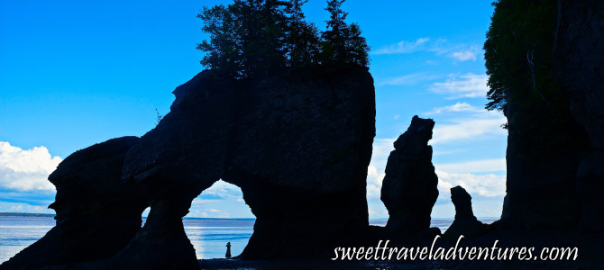 Exploring the Tidal Phenomena of the Bay of Fundy: One of the Marine Wonders of the World!