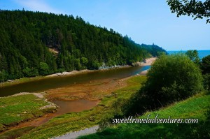 Blue Sky With River Flowing Into the Ocean on the Right Side of the Picture, On the Left Side of the River is a Hill Covered in Green Trees, On the Right Side of the River is Green Grass, Then a Narrow Paved Pathway, Then Green Bushes and Green Trees and Green Grass Sloping Upward