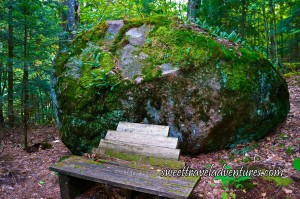 Gigantic Rock Almost Completely Covered in Moss and a Few Small Green Plants, A Wooden Bench in Front of the Rock, Green Trees Behind the Rock, and the Ground Has a Few Yellow Leaves