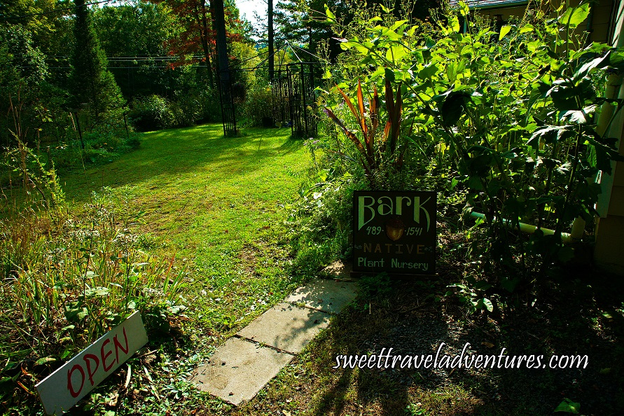 Green Grass With a Black Gazebo in the Distance and Green Trees and Green Plants All Around the Yard, a White Open Sign With Red Letters to the Left and a Brown Sign with White Lettering Propped Up in Front of Some Plants With the Words Bark Native Plant Nursery