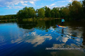 Blue Sky With Small Fluffy White Clouds Reflected Onto the Lake, Someone Standing on a Long Blue and Yellow Board With Their Back Towards Us Holding a Long Paddle, Reeds, Green Grass, and Green Trees Around the Lake and a House Peeking Out Between the Trees in the Middle