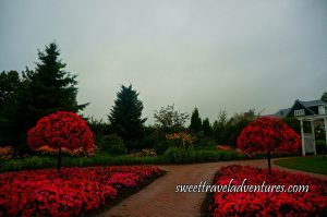 A Walkway With Pink and Red Flowers and a Tree of Pink and Red Flowers on Both Sides of the Walkway, on the Right is a White Arch and the Upper Portion of a Mansion, in the Background of the Picture is Green Trees, Shrubs, and Flowers, and a Grey Sky