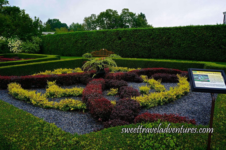 Burgundy and Light Green Plants Planted to Form Celtic Knots With a Green Plant in the Middle and Green Hedging Around the Knots, a Brown Bench in the Distance With Tall Green Hedging and Green Trees Behind it, and a Grey Sky