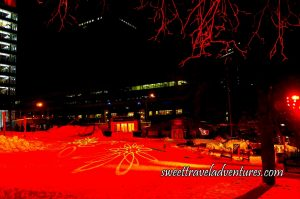 It is Night and the Snow is Illuminated a Dark Orange With Yellow Flowers Projected onto it, on the Right is a Tree Illuminated Dark Orange, in the Center Background is a Building With the Lights on, and on the Left in the Background is a Tall Building With the Lights on